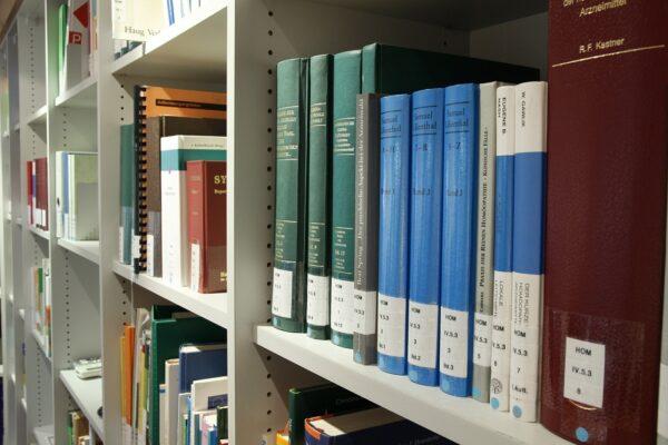 Word und Co – die besten Hilfen für die Bachelorarbeit