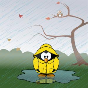 Was taugen Wetter Apps und welche sind empfehlenswert?