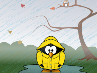 Was taugen Wetter Apps