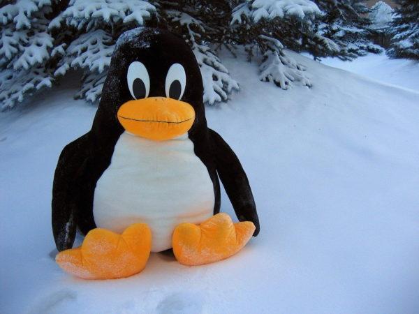 Linux Pinguin Lustig